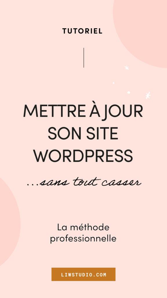 Mettre à jour son site WordPress sans tout casser, mise à jour WordPress, étape par étape, professionnel - Liw studio