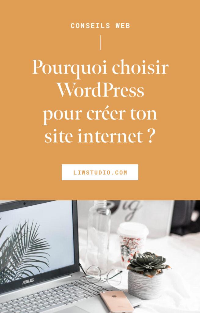 Pourquoi Choisir WordPress pour ton site internet ?