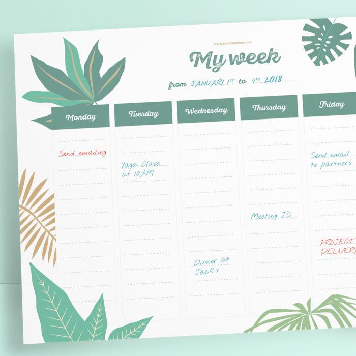 Planner à télécharger et imprimer - motif tropical - monstera - emploi du temps